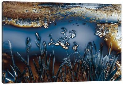 Lentic Dream I Canvas Art Print