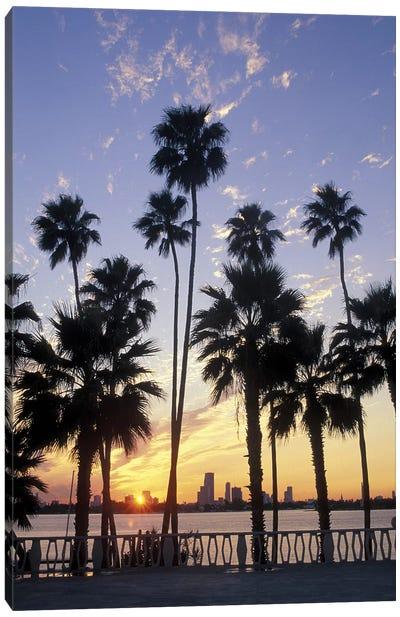 Miami Skyline With Palm Trees Canvas Art Print
