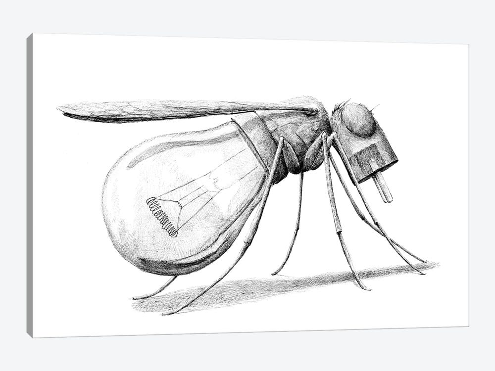 Mosquito by Redmer Hoekstra 1-piece Canvas Print
