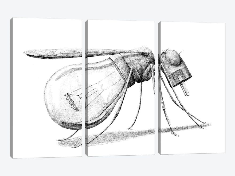 Mosquito by Redmer Hoekstra 3-piece Canvas Art Print
