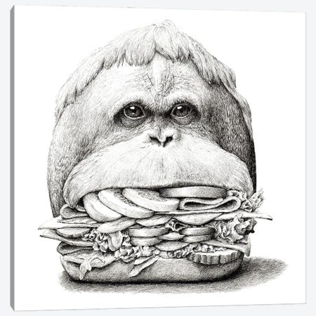 Ape Sandwich Canvas Print #RHK1} by Redmer Hoekstra Canvas Art