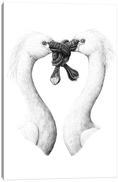 Spoonbill Canvas Art Print