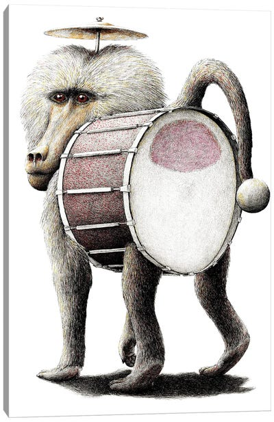 Baboon Canvas Art Print
