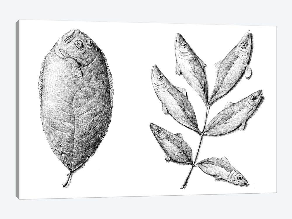 Fish by Redmer Hoekstra 1-piece Canvas Artwork