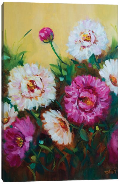 Pink Sprinkles And Whispering White Peonies Canvas Art Print