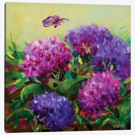 Spring Hydrangeas And The Curious Butterfly Canvas Print #RHN26} by Rohini Mathur Art Print