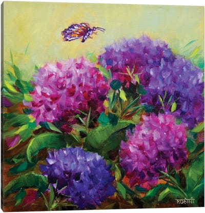 Spring Hydrangeas And The Curious Butterfly Canvas Art Print