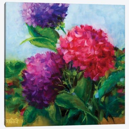 Summertime Hydrangeas Canvas Print #RHN29} by Rohini Mathur Canvas Art