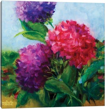 Summertime Hydrangeas Canvas Art Print