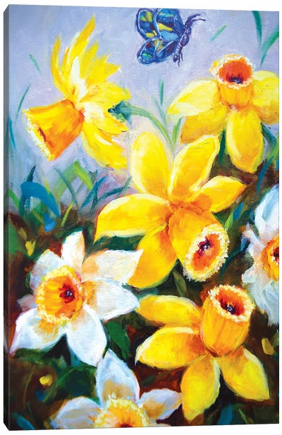 Sunshine Dancing Daffodils And The Curious Butterfly Canvas Art Print