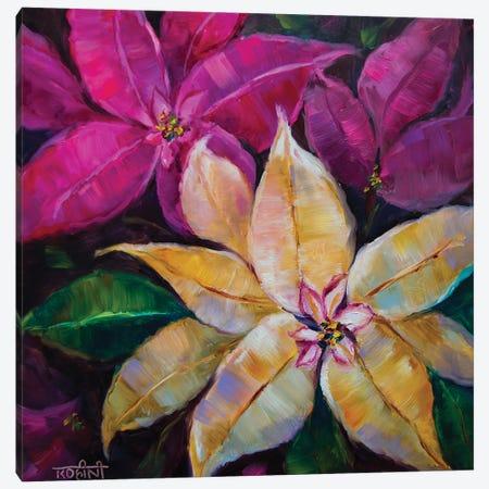 Vanilla White And Sugar Pink Holiday Poinsettias Canvas Print #RHN32} by Rohini Mathur Art Print