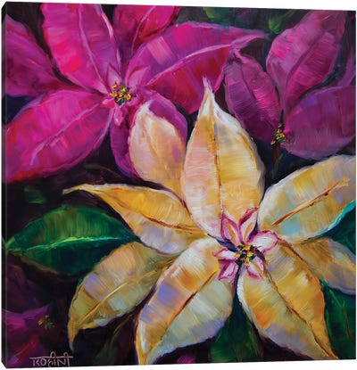 Vanilla White And Sugar Pink Holiday Poinsettias Canvas Art Print