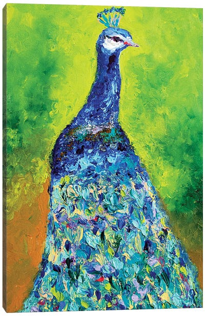 The Dazzling Majestic Peacock Canvas Art Print