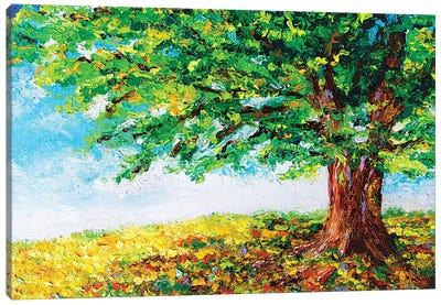 Spring Is Here Canvas Art Print