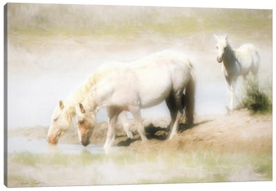 Angles in the Water Canvas Art Print