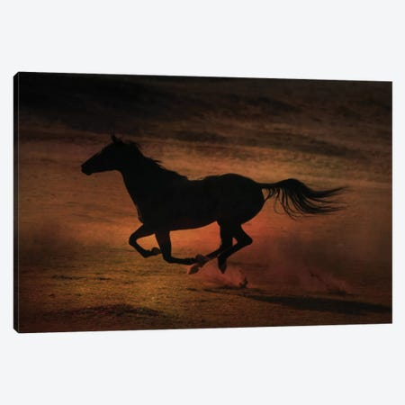 Sunset Run Canvas Print #RHT41} by Rhonda Thompson Canvas Wall Art