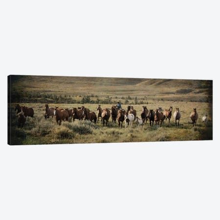 The Montana Round Up Canvas Print #RHT43} by Rhonda Thompson Canvas Wall Art