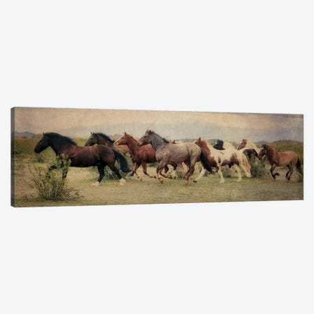 A Run Through the Desert Canvas Print #RHT54} by Rhonda Thompson Canvas Art