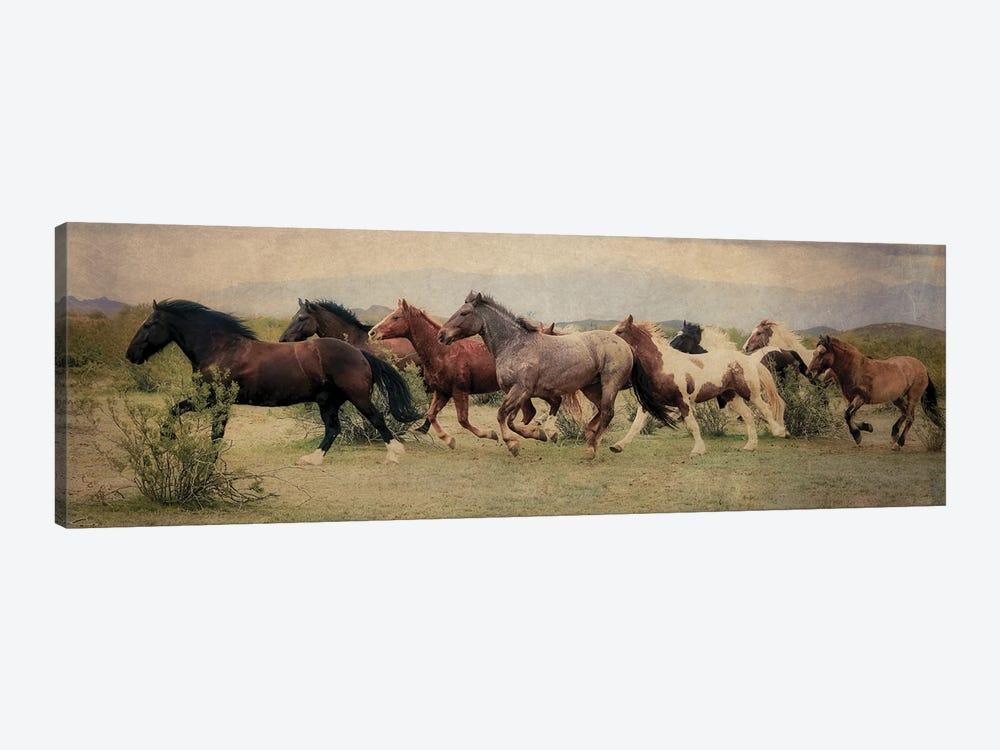 A Run Through the Desert by Rhonda Thompson 1-piece Canvas Print