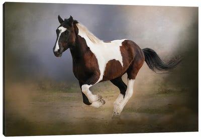 A Run Through the Mist Canvas Art Print