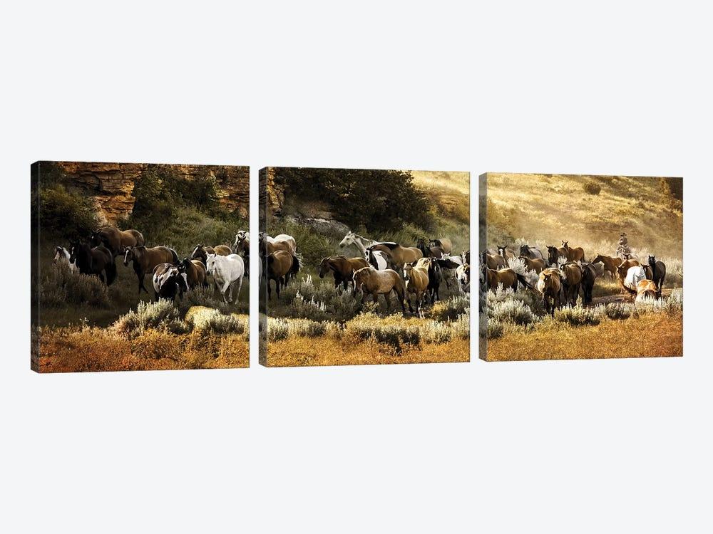 Canyon Round Up by Rhonda Thompson 3-piece Canvas Art Print