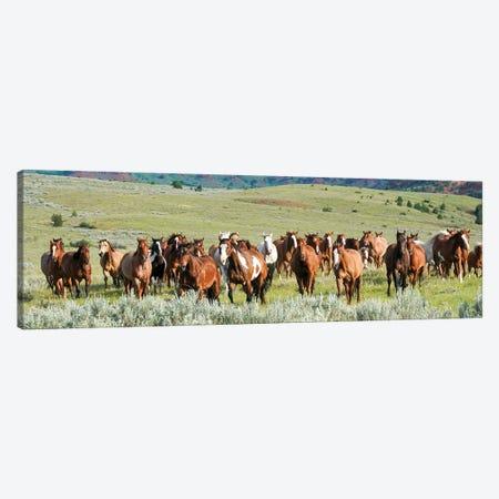 Band on the Run Canvas Print #RHT60} by Rhonda Thompson Canvas Art