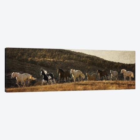 Coming around the Mountian Canvas Print #RHT66} by Rhonda Thompson Art Print