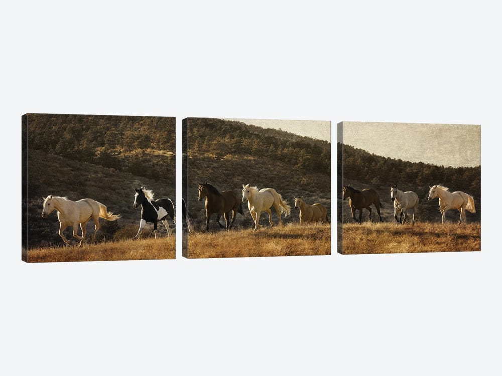 Coming around the Mountian by Rhonda Thompson 3-piece Canvas Artwork