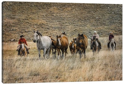 Moving Horses Canvas Art Print
