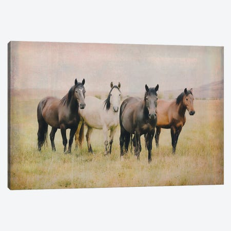 Our Home Canvas Print #RHT81} by Rhonda Thompson Canvas Artwork