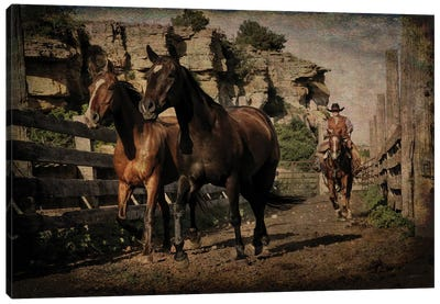Pushing them Along the Alley Canvas Art Print