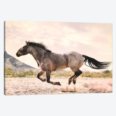 Running through the Desert Canvas Print #RHT89} by Rhonda Thompson Canvas Wall Art