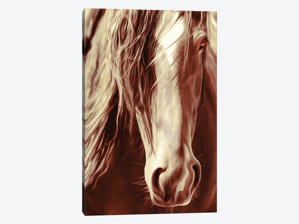Sepia Rodeo Horse by Rhonda Thompson 1-piece Canvas Print