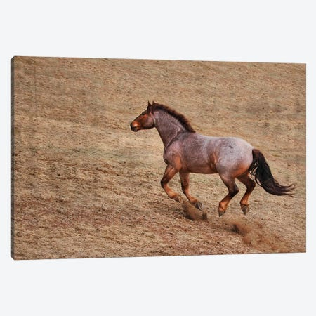 Taking the Challenge up Hill Canvas Print #RHT95} by Rhonda Thompson Canvas Wall Art