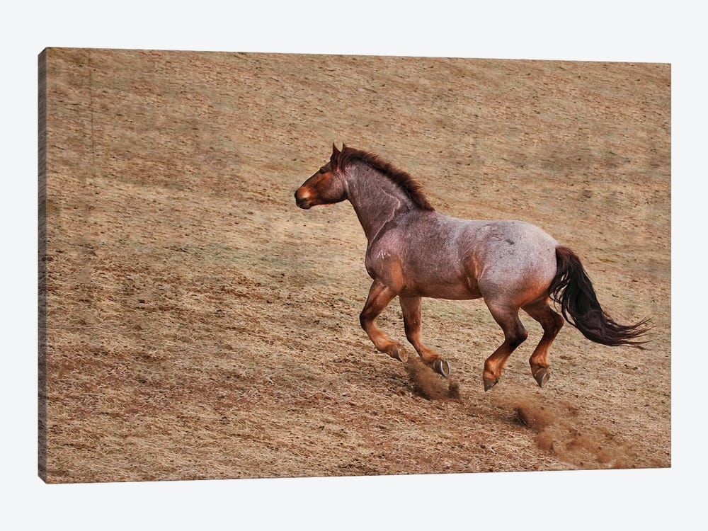Taking the Challenge up Hill by Rhonda Thompson 1-piece Canvas Art