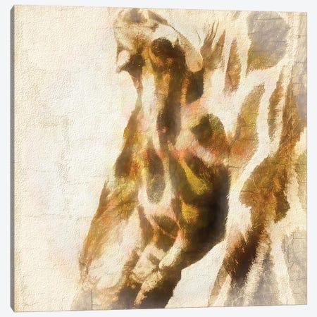 Inspektor V Canvas Print #RHW19} by Ryan Hartson-Weddle Canvas Wall Art