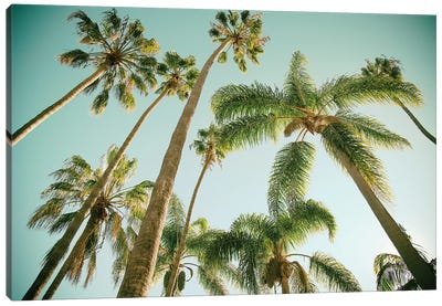 Tropical Towers  Canvas Art Print