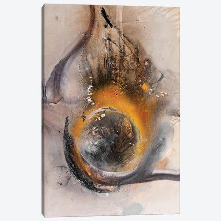 Eye Broh Canvas Print #RIB25} by Adriano Ribeiro Canvas Artwork