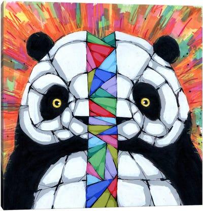 Bipolar Tendencies Canvas Print #RIC40