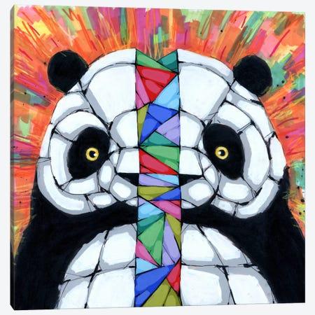 Bipolar Tendencies Canvas Print #RIC40} by Ric Stultz Canvas Artwork