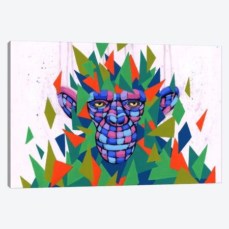 Falling Into Place Canvas Print #RIC9} by Ric Stultz Canvas Art Print