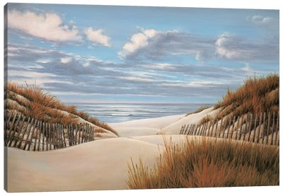To the Shore II Canvas Art Print
