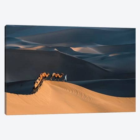 Desert Boat Canvas Print #RIL1} by Richard Liu Canvas Artwork
