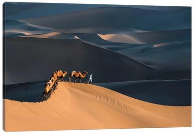 Desert Boat Canvas Art Print