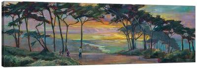 San Francisco Cypress Canvas Art Print