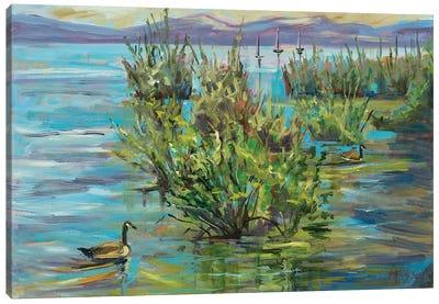 Lake Willows Canvas Art Print