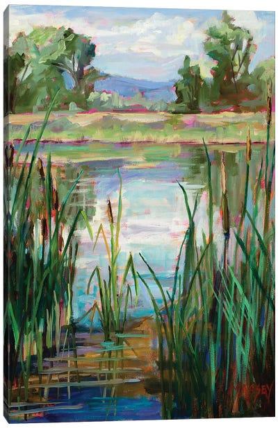 Cattail Pond Canvas Art Print