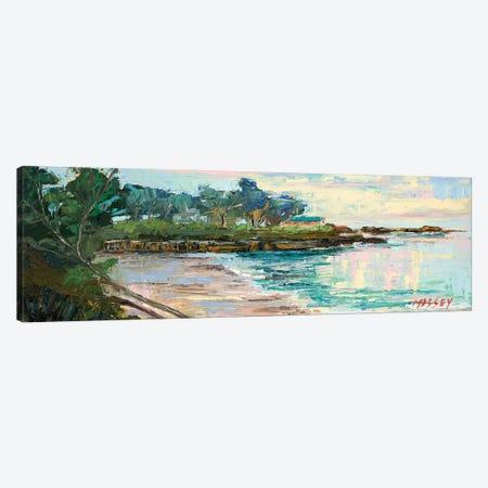 Windswept Shore Canvas Print #RIM33} by Marie Massey Canvas Art Print