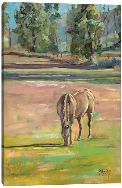 Out To Pasture Canvas Art Print