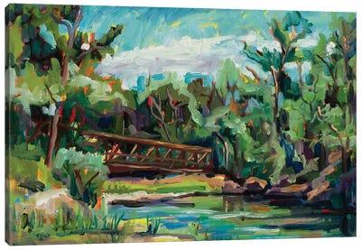 Poudre River Passage Canvas Art Print